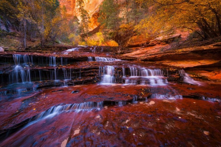 Top 10 Zion-Emerald Pools