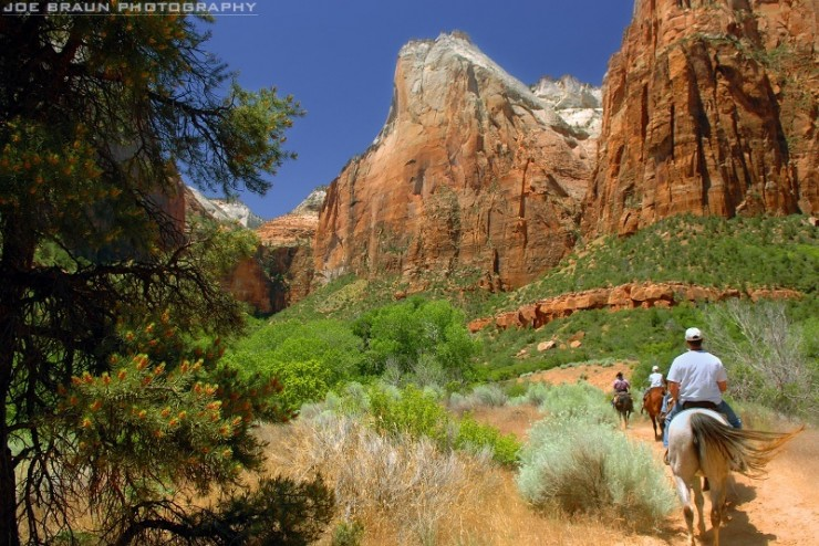 Top 10 Zion-Horse-Photo by Joe Braun