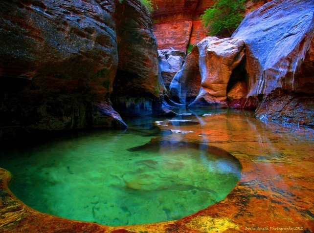 "Top 10 Zion-Subway-Photo by D. ""Bodhi"" Smith"