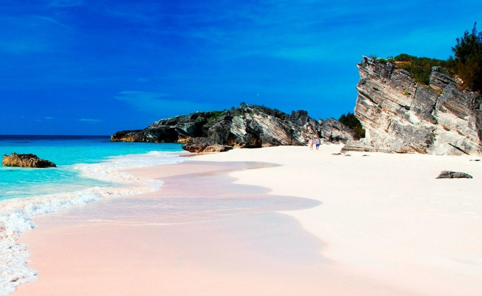 The unique pink sands beach in harbour island the bahamas for Pink sands harbour island bahamas