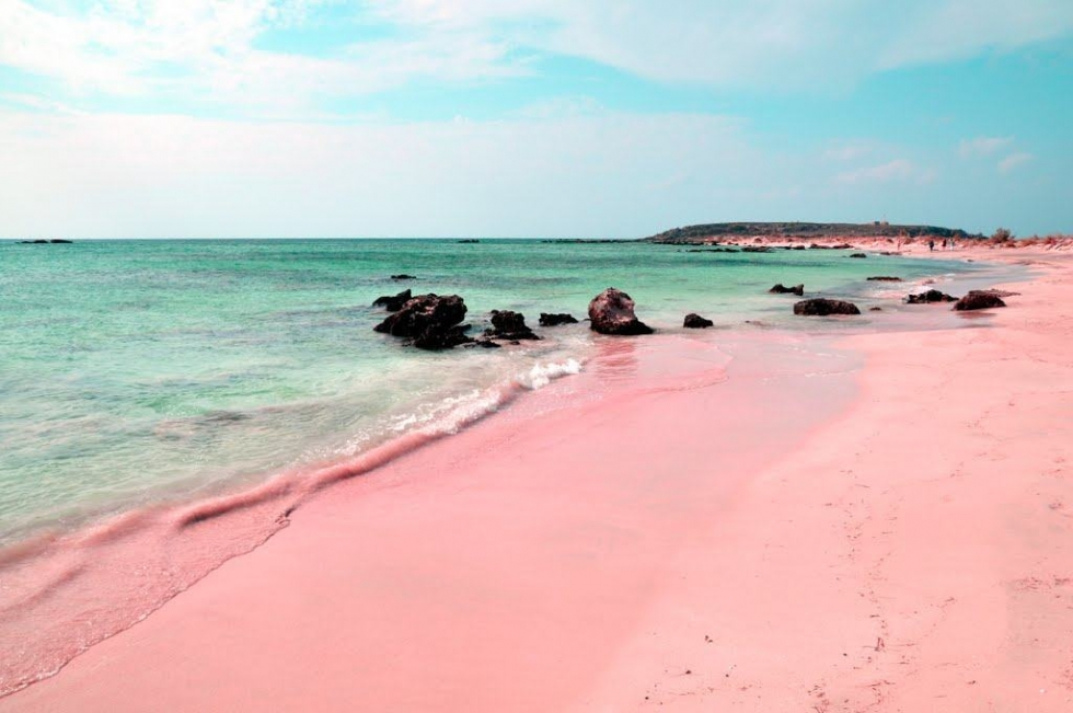 The Unique Pink Sands Beach In Harbour Island Bahamas