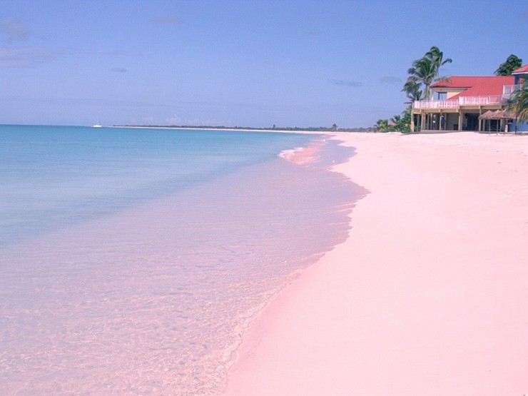 The Unique Pink Sands Beach in Harbour Island, the Bahamas ...