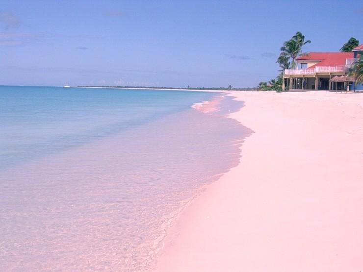 Pink Sand6