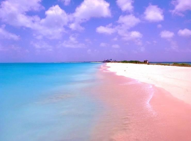 Pink Sand7