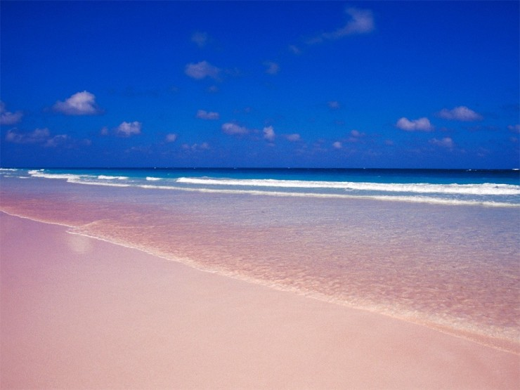 Pink Sand9
