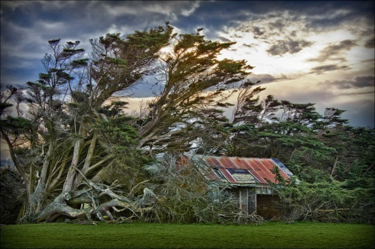 Top Deserted Places-Slope Point-Photo by Carol Darby