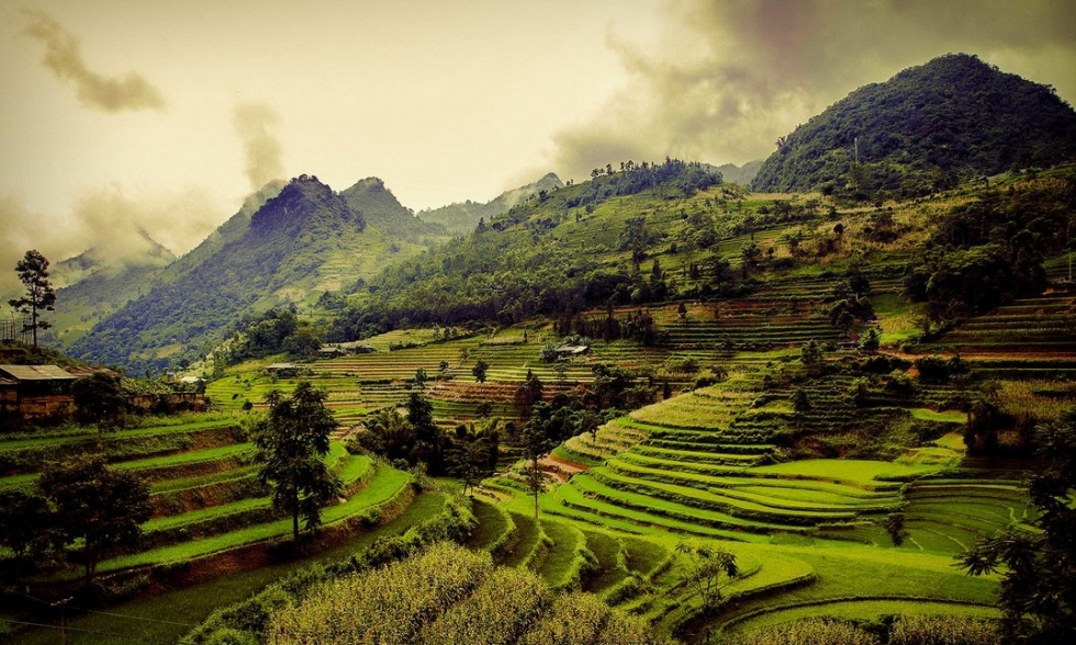 Top 10 Natural Terraced Structures
