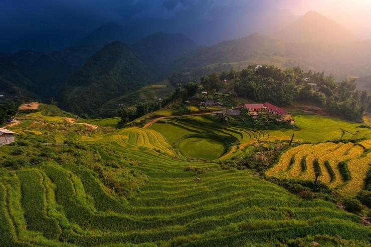 Top Terraced-Vietnam-Photo by Ratnakorn Piyasirisorost