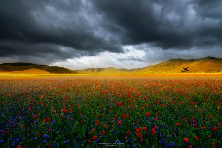 Castelluccio by Gaspare Silverii Fotografia
