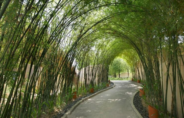 Top 10 Asian Resorts-Naka-Photo by Starwood Hotels & Resorts Worldwide (2)