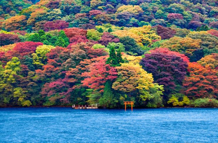 Top 10 Autumn-Ashi2