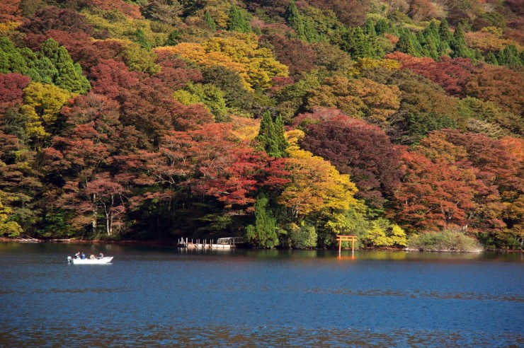 Top 10 Autumn-Ashi3
