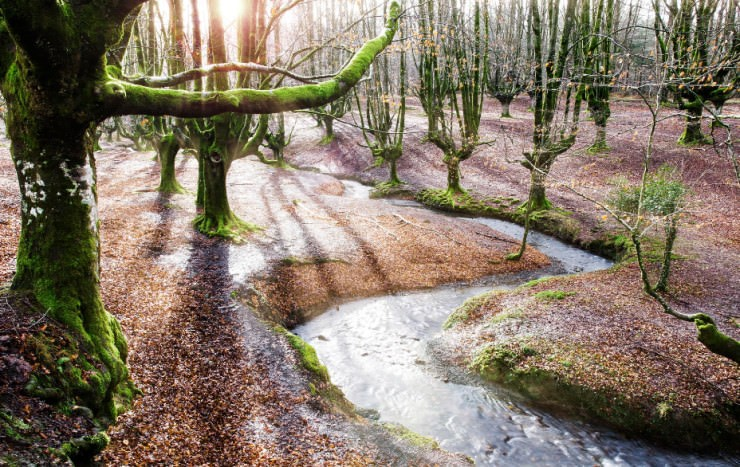 Top 10 Autumn-Gorbea-Photo by David Pintado2