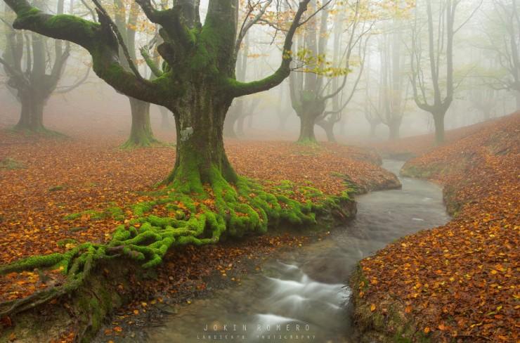 Top 10 Autumn-Gorbea-Photo by Jokin Romero