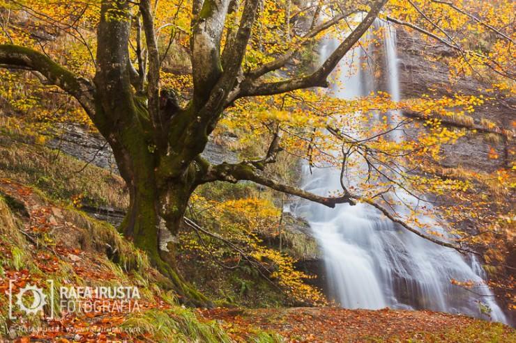 Top 10 Autumn-Gorbea-Photo by Rafa Irusta