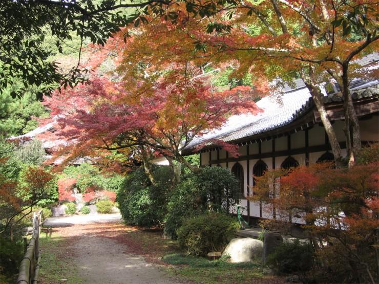 Top 10 Autumn-Japan2