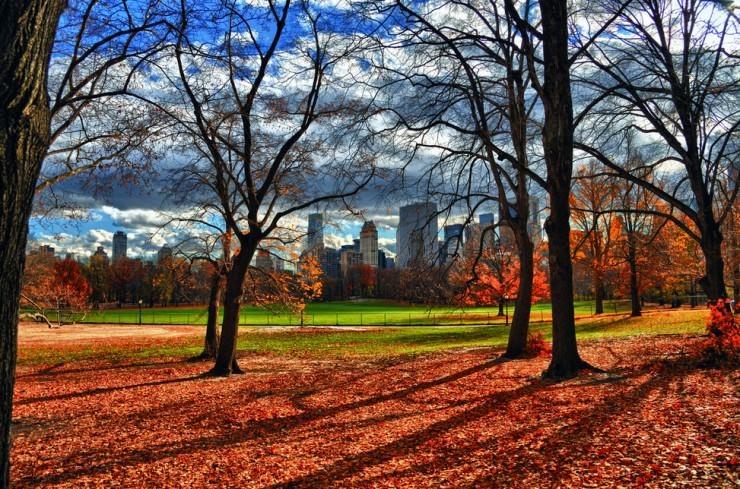 Top 10 Autumn-NYC-Photo by Joe Josephs