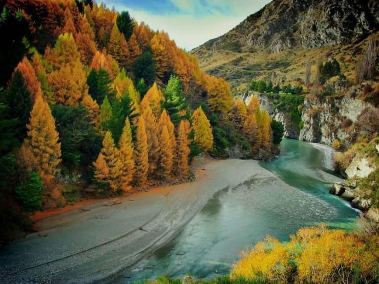 Top 10 Autumn-Otago
