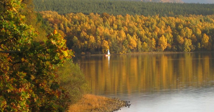 Top 10 Autumn-Skye2