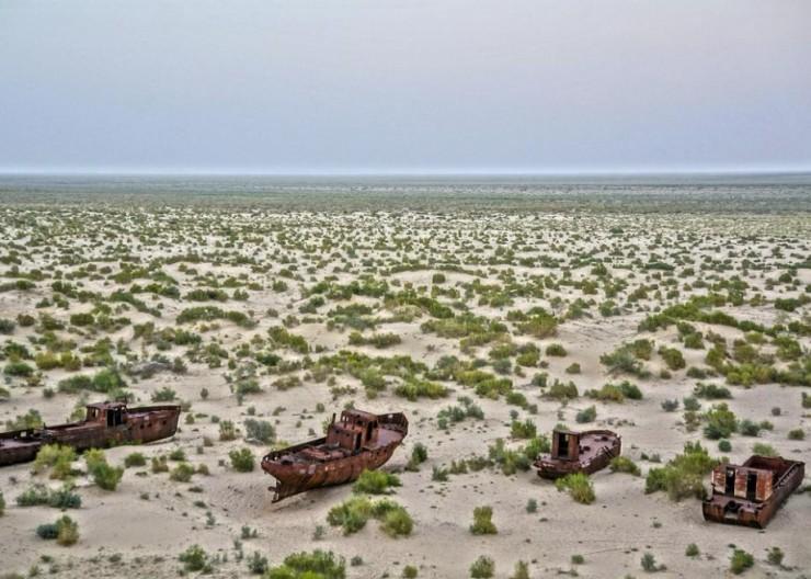 Top 10 Google-Aral2