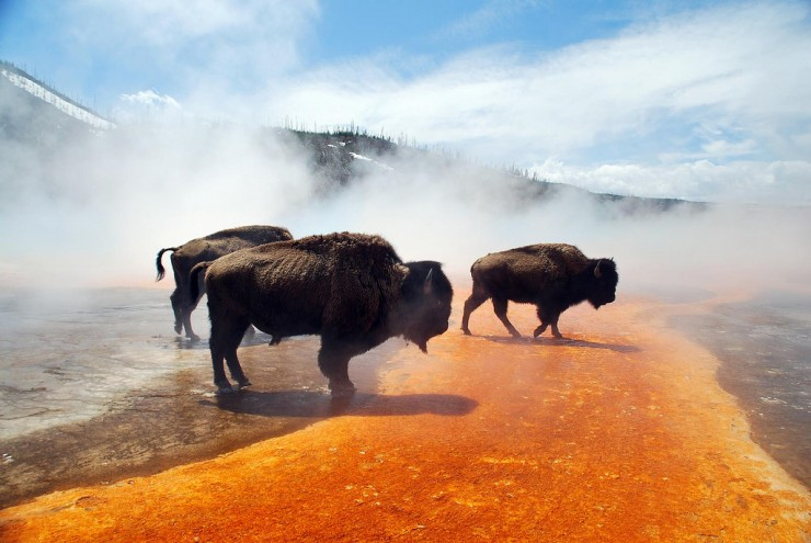 Top 10 Google-Grand Prismatic-Photo by Jonohey