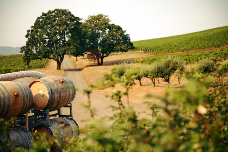 Top 10 Wine-California2