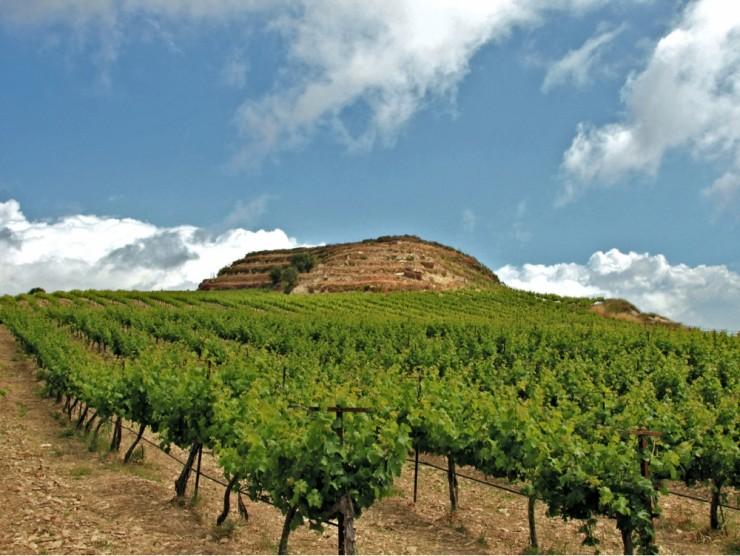 Top 10 Wine-Crete3