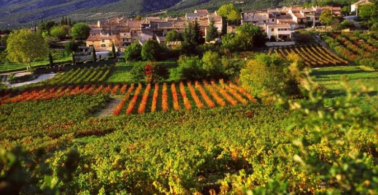 Top 10 Wine-France3