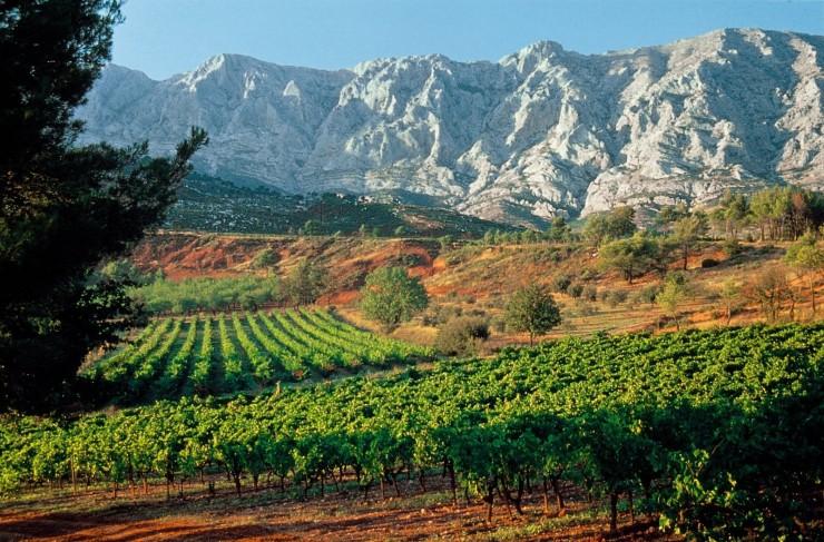 Top 10 Wine-France5