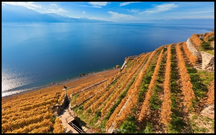 Top 10 Wine-Lavaux-Photo by JHG Photography3