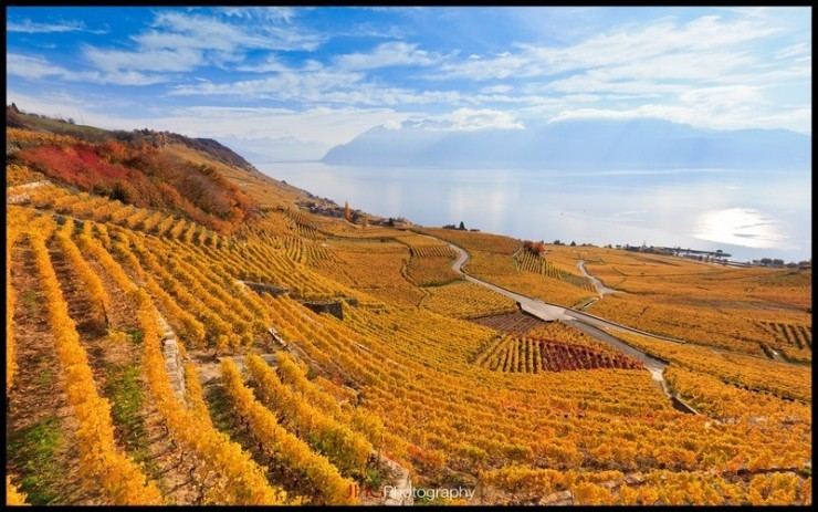 Top 10 Wine-Lavaux-Photo by JHG Photography5