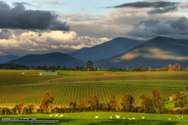 Top 10 Wine-Yarra-Photo by 98octanephotography