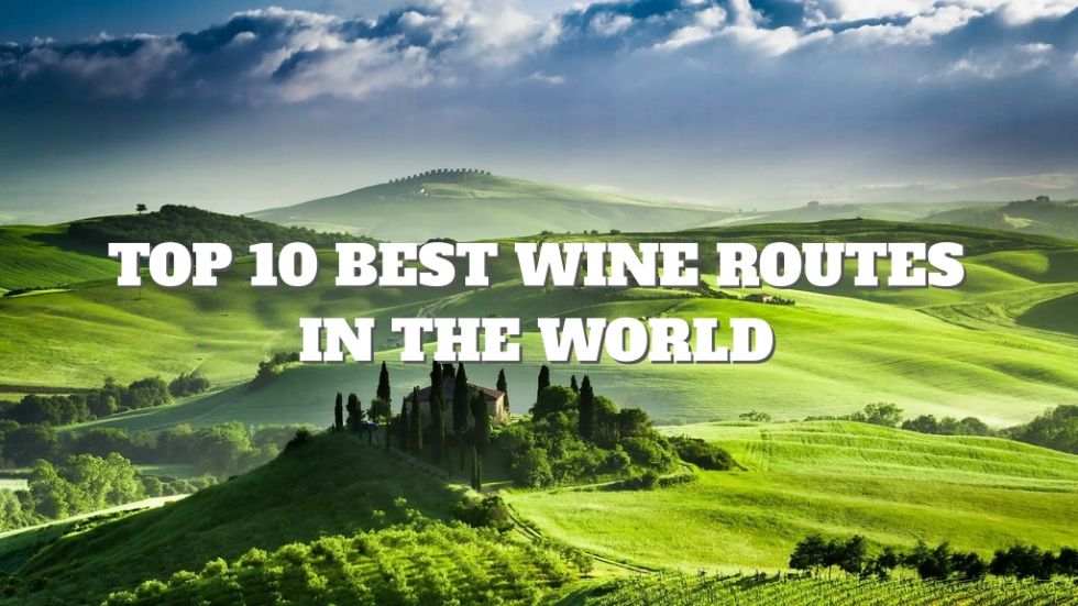 Top 10 Best Wine Routes in the World