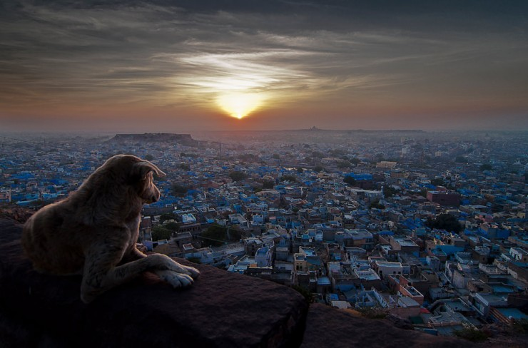 Top Ancient Towns-Jodhpur-Photo by Sudharshun Gopalan