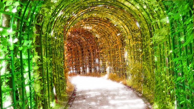 Top Bavaria-Garden