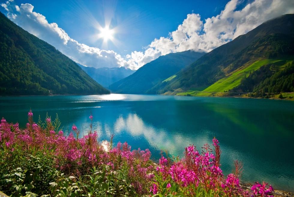 The Alps - Spirit Shambles