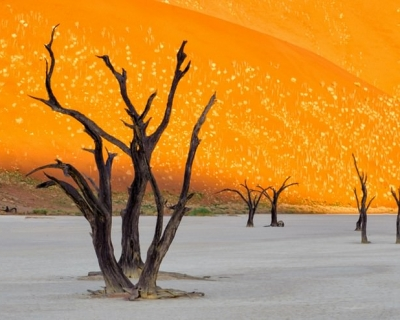 Top 10 Deserts and Sandy Landscapes