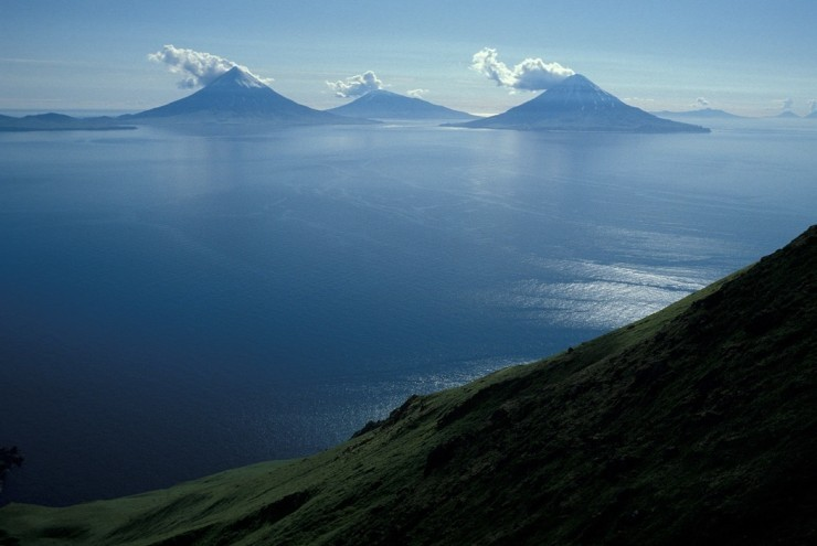 Top Surfing-Aleutian
