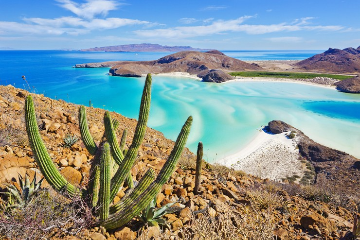 Mexico, Baja California Sur, La Paz, Gulf of California,Sea of Cortez, Gulf of Mexico, Balandra Beach in Pichilingue Peninsula with Isla Espiritu Santo in the background