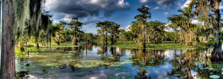Top American Lakes-Caddo-Photo by Jaynik
