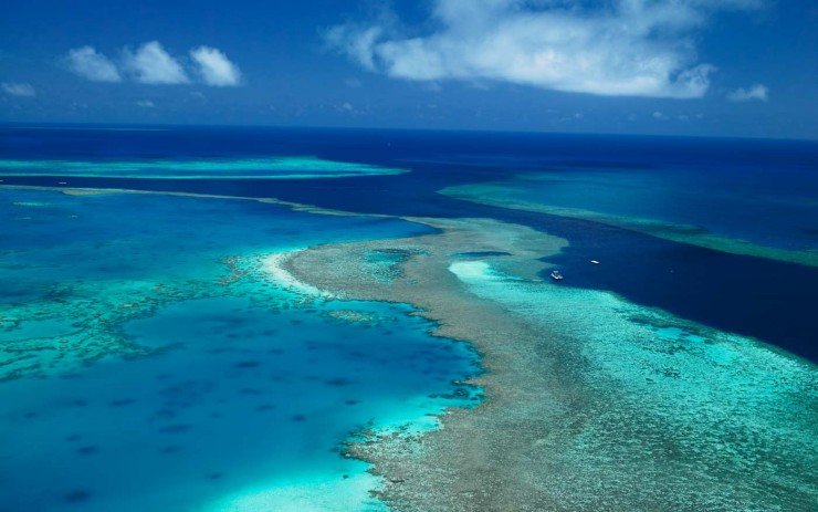Top Coral Reefs-Great Barrier2