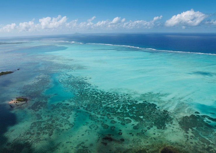 Top Coral Reefs-Mauritius4
