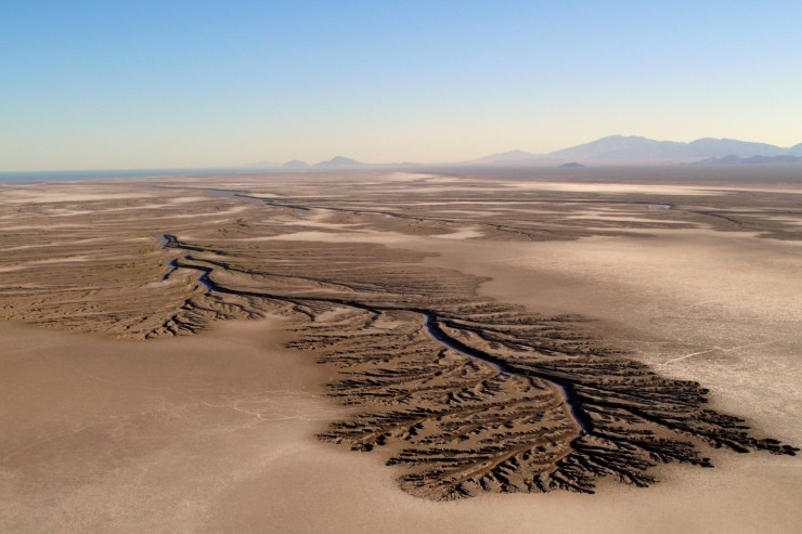 Top Mexico-Desert