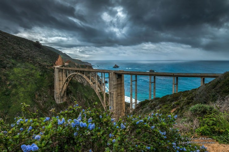 Top Ocean Views-Bixby-Photo by Darvin Atkeson