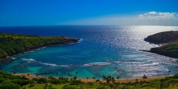 Top Ocean Views-Hanauma-Photo by Drew Pyykkönen