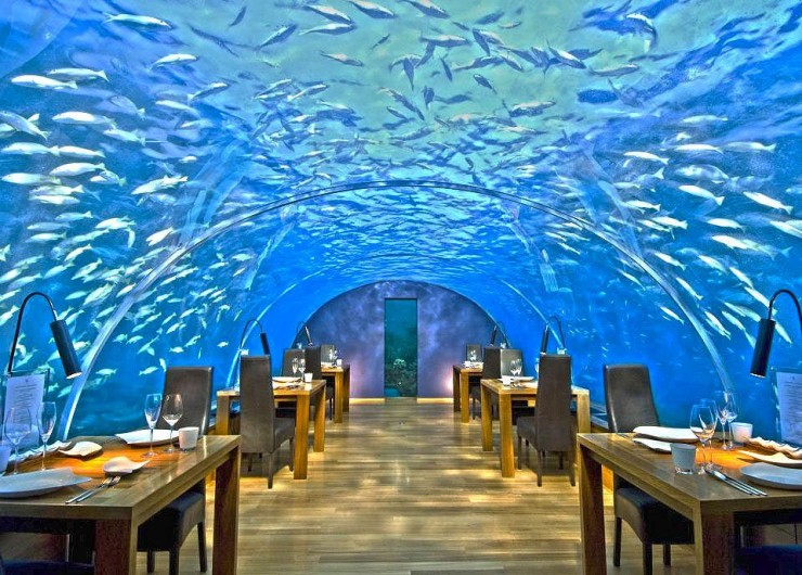 top underwater ithaa - Underwater World Restaurant
