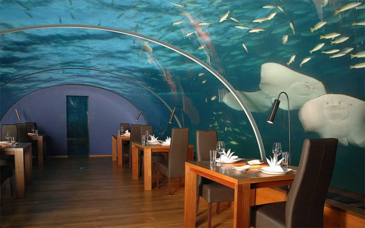 top underwater ithaa photo by ithaa restaurant3 - Underwater World Restaurant