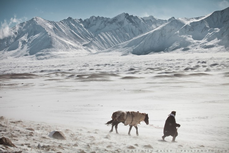 A shepherd with his horse, herding his yaks near frozen Chakmaktin (meaning Flint Stone) Lake. In and around Ech Keli, Er Ali Boi's camp, one of the richest Kyrgyz in the Little Pamir. Trekking with yak caravan through the Little Pamir where the Afghan Kyrgyz community live all year, on the borders of China, Tajikistan and Pakistan.