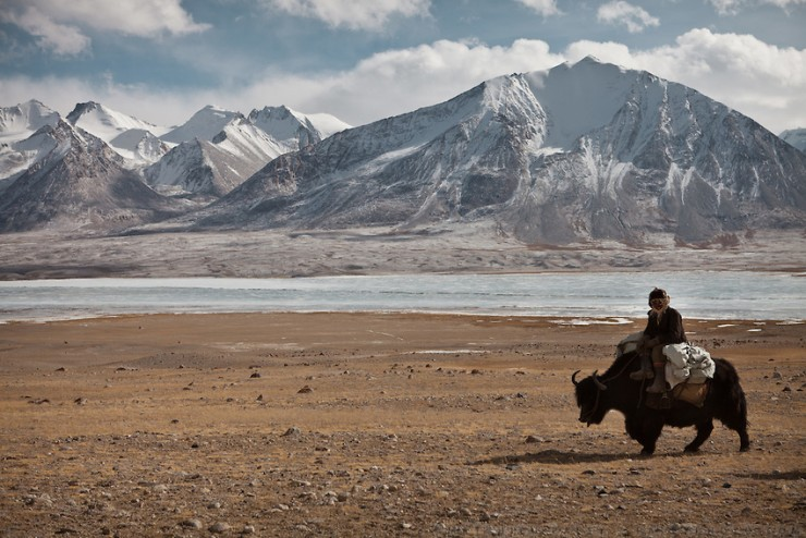 A Kyrgyz riding the leading yak of a caravan beside the frozen Chaqmaqtin lake. From Ak Chyktash (Mullah Abdul Kossim) to Ech Keli (Er Ali Boi's camp). Trekking with yak caravan through the Little Pamir where the Afghan Kyrgyz community live all year, on the borders of China, Tajikistan and Pakistan.