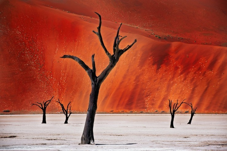 Namib-Photo by Rocco Mega